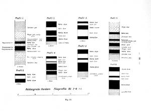 Profile_1925