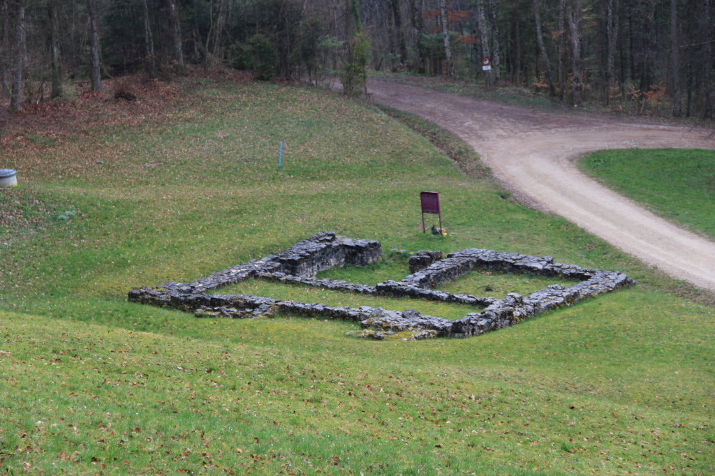 Ruine Sünikon © Thomas Zollinger